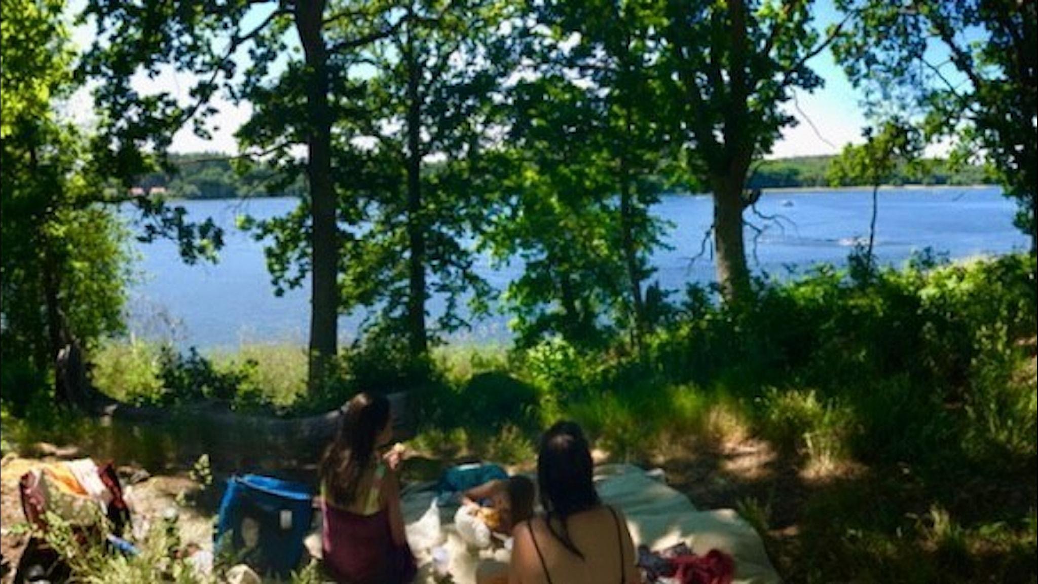 Picknick järven rannalla