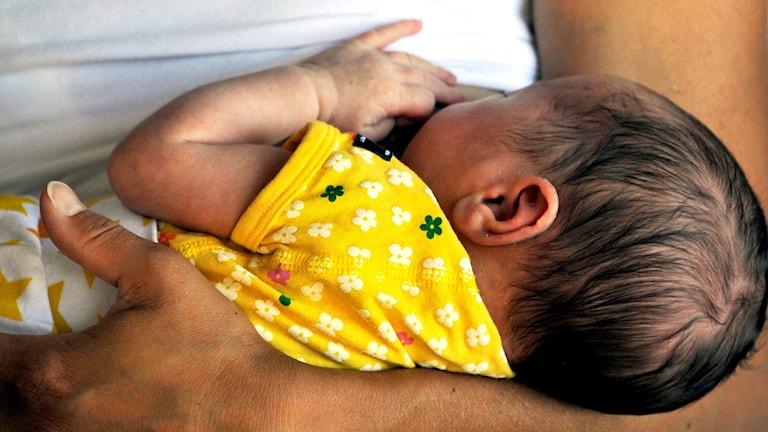 Nyfödd som ammar