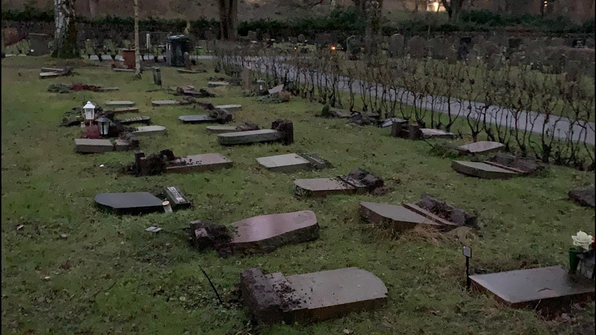 Välta gravstenar på Norra begravningsplatsen i Solna