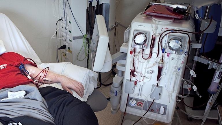 Njursjuk man får dialysbehandling.