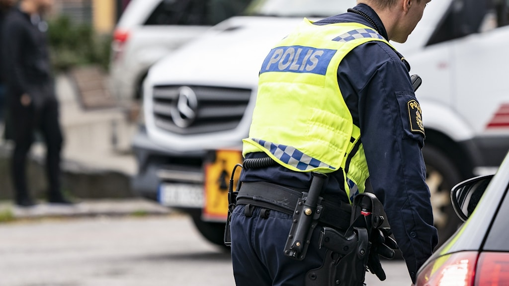 Polisinsats