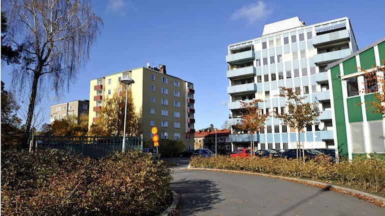 Flerfamiljshus i ett bostadsområde på södra Lidingö. Foto: Bertil Ericson /Scanpix.