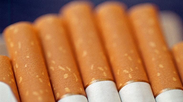 Cigaretter i paket. Foto: Fredrik Persson /Scanpix.