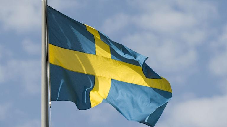 Svensk flagga. Foto: Henrik Montgomery/Scanpix