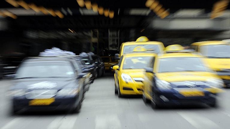 Taxibilar i Stockholm. Foto: Bertil Ericson /Scanpix.