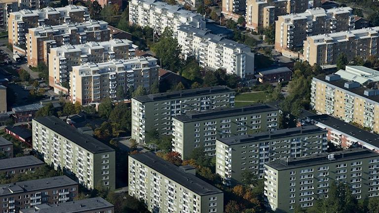 Höghus i Rinkeby. Foto: Jonas Ekströmer / SCANPIX