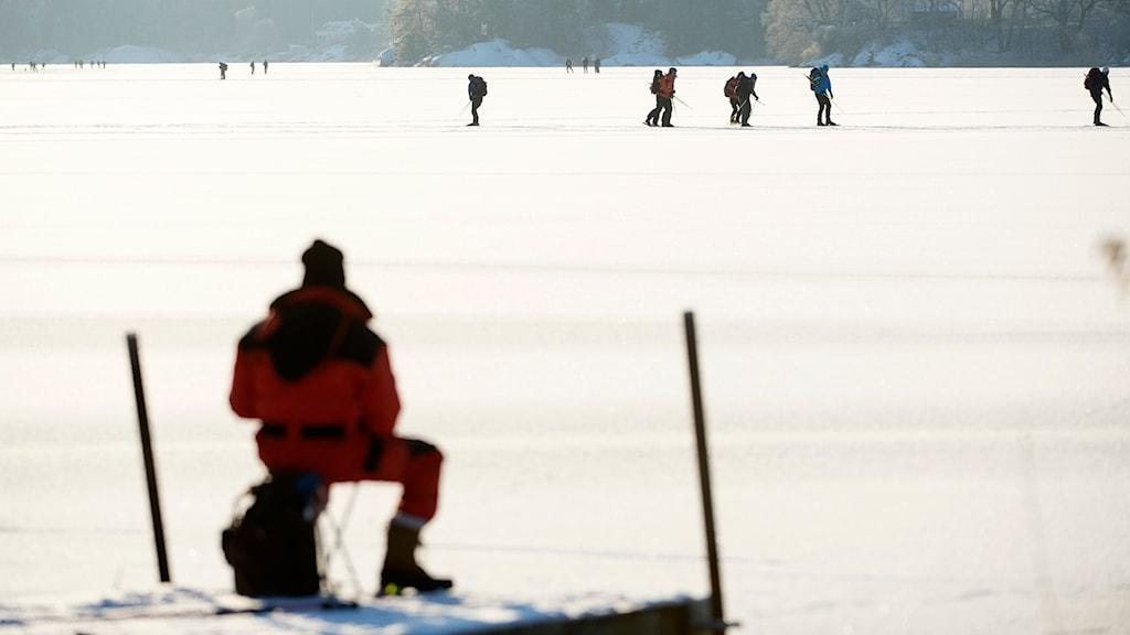 Skridskoåkare på sjön Drevviken. Foto: Henrik Montgomery / TT.