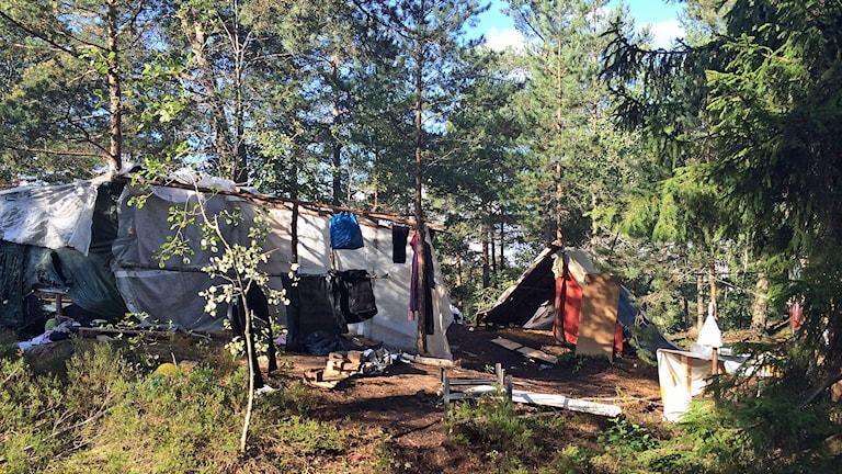 EU-migranter i sex tältläger runt om i Stockholm avhystes idag. Foto: Anders Hildemar Ohlsson/SR Stockholm.