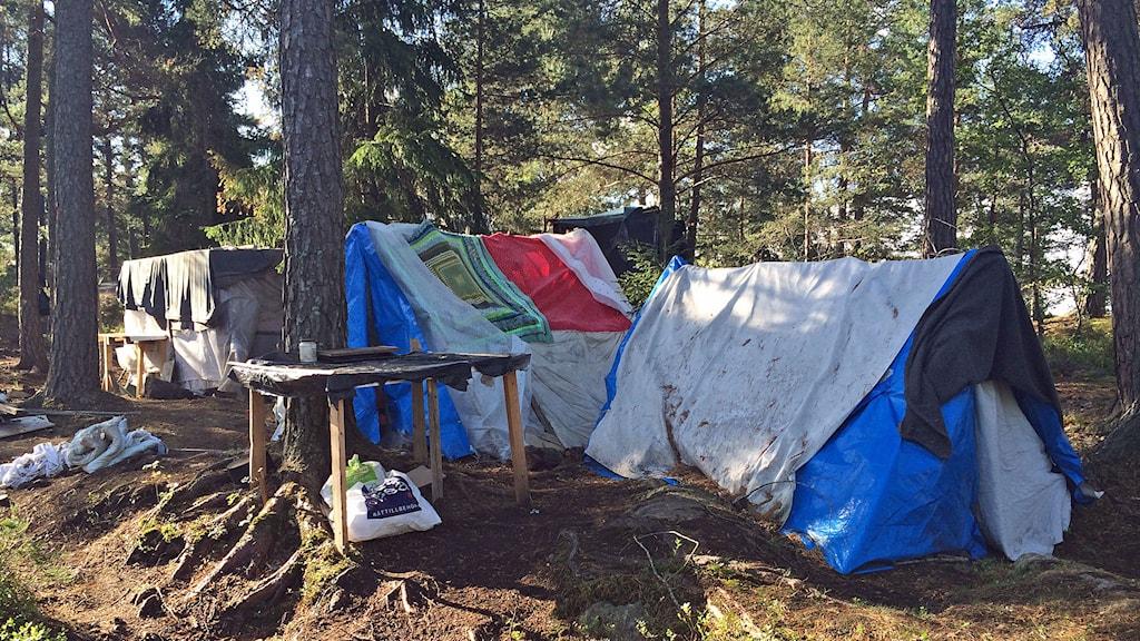 Bild från ett tältläger i Stockholm. Foto: Anders Hildemar Ohlsson/Sveriges Radio