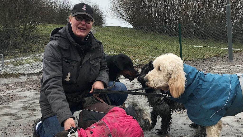 Marina Pansera med hundar av olika raser i hundrastgår.
