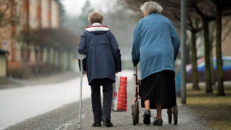 Två äldre kvinnor på promenad. Foto: Fredrik Sandberg /TT.