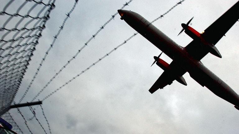Flygplan innan landning på Arlanda flygplats. Foto: Björn Larsson Ask/TT.