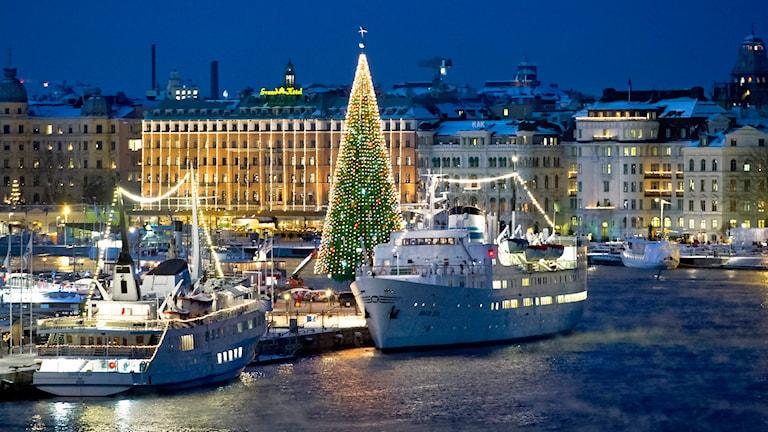 Julgranen på Skeppsbron i Stockholm. Foto: Claudio Bresciani /TT.