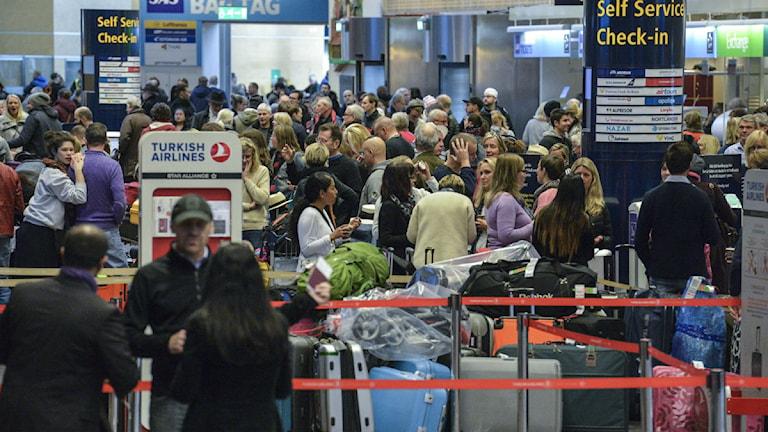 Bagage och passagerare väntar i Terminal 5. Foto: Johan Nilsson/TT.
