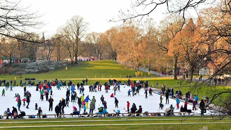 Skridskoåkning i Vasaparken den 29:e december 2013. Solsken och snöfritt i Stockholm efter en ovanligt varm julhelg. Foto: Henrik Montgomery /TT.
