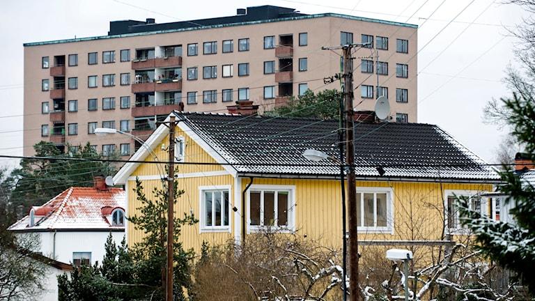 Villor och i bakgrunden ett flerfamiljshus. Foto: Henrik Montgomery /TT.
