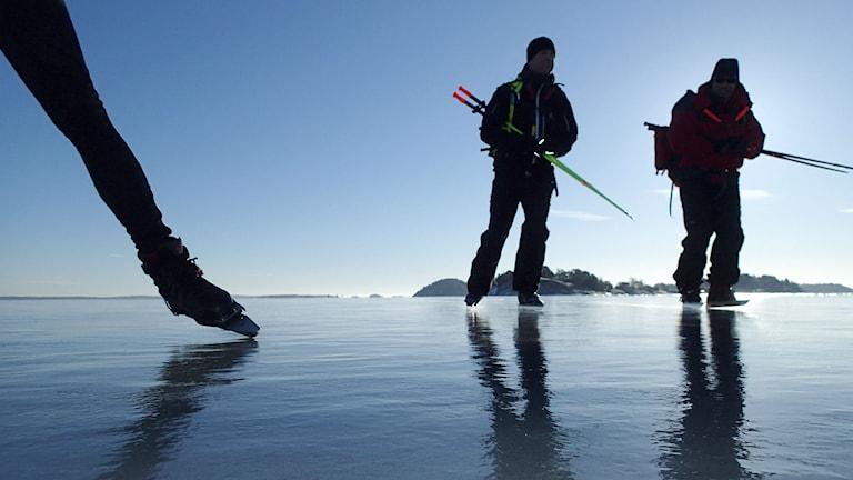 Långfärdsskridskoåkare. Foto: Tobias Röstlund/TT