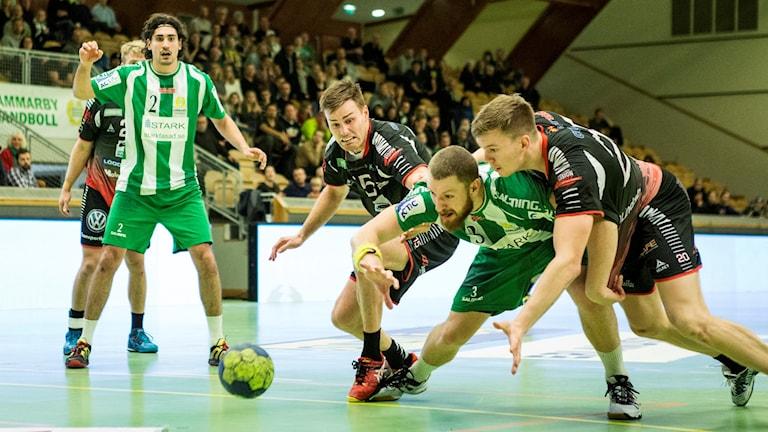 Hammarby handboll