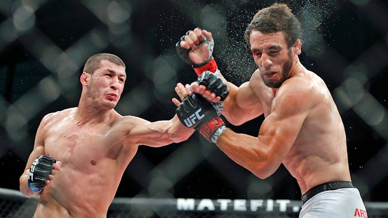Rashid Magomedov, left, from Russia, left, fights Elias Silverio, from Brazil, during their UFC lightweight mixed martial arts bout in Barueri, on the outskirts of Sao Paulo, Brazil, early Sunday, Dec. 21, 2014. (AP Photo/Andre Penner) /TT