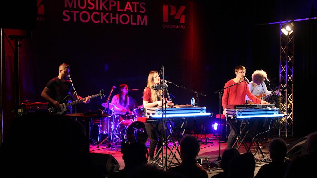 Last Lynx. Foto: Lars-Åke Gustavsson/Sveriges Radio