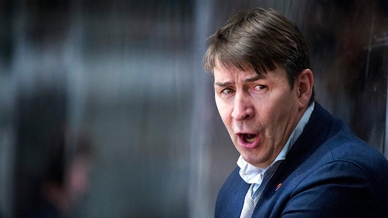 Djurgårdens tränare Hans Särkijärvi. Foto: Marcus Eriksson / TT
