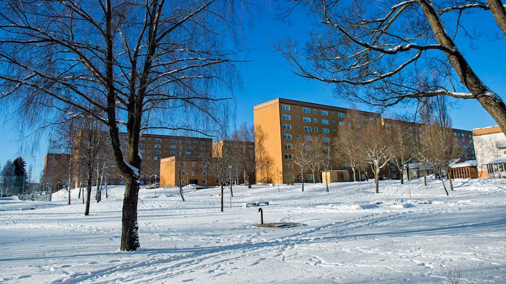 Flerfamiljshus i Hovsjö, Södertälje. Arkivfoto: Claudio Bresciani /TT.