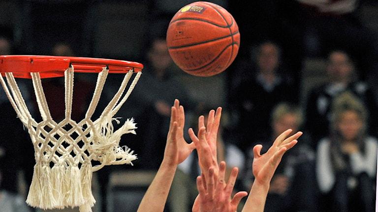 Basket. Foto: Fredrik Sandberg /TT.