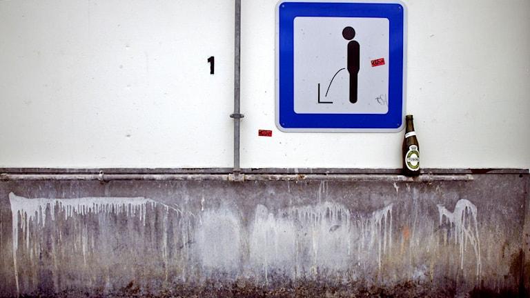 Pissoar. Foto: Pontus Lundahl/TT.