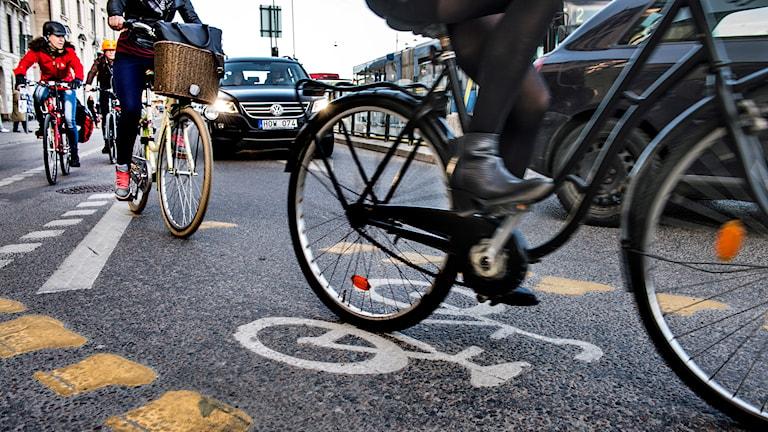 Cyklister på en trång cykelbana i Stockholm Foto: Tomas Oneborg /TT.