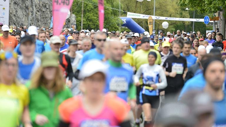 Starten av Stockholm Marathon på lördagen. Foto: Marcus Ericsson / TT.