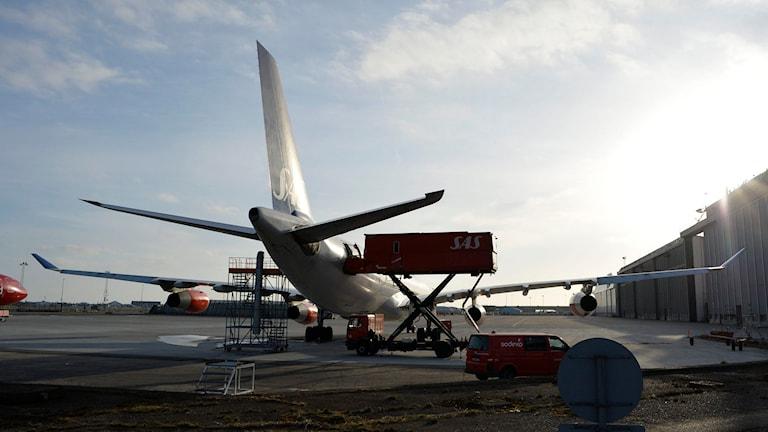 Ett av SAS långdistansflygplan av typen Airbus 340-313X. Foto: Johan Nilsson / TT.