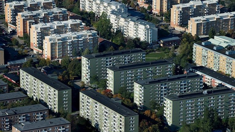 Rinkeby. Foto: Jonas Ekströmer/TT