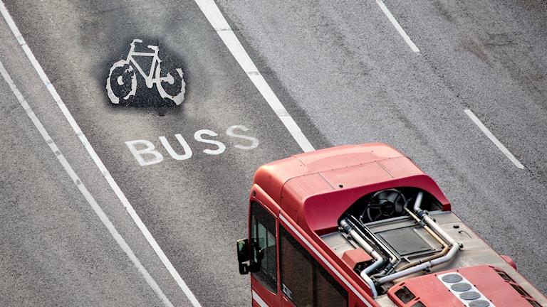 Buss och cykelbana