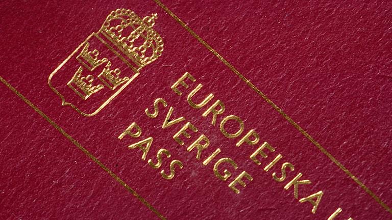 Polisen utreder om falska pass tillverkade i Stockholm kan ha använts av människosmugglare. ARKIVBILD. Hasse Holmberg / TT