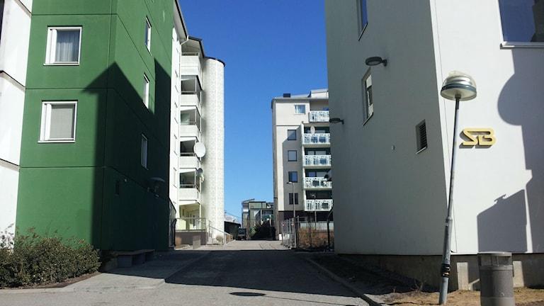 Renoverat hus i Husby. Foto: Peter Johansson/Sveriges Radio