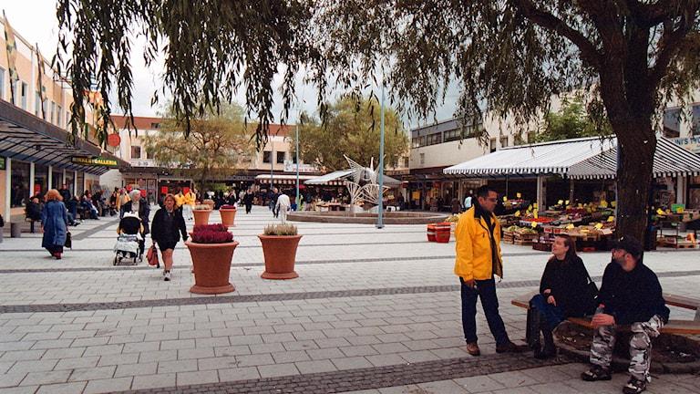 Rinkeby torg Kulturförvaltningen är en av de förvaltningar som flyttade ut för ett år sedan. Foto: Fredrik Persson