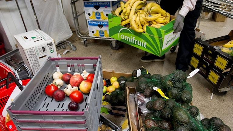 Mycket mat slängs i butikerna. Foto: Fredrik Sandberg / TT