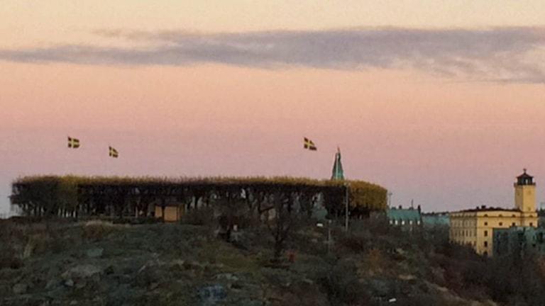 Utsiktsplatsen Fåfängan på Södermalm (arkivbild). Foto: August Bergkvist/Sveriges Radio