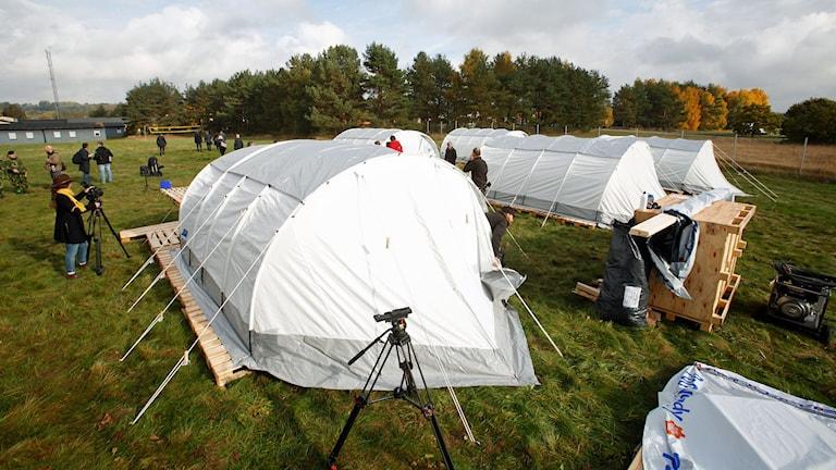 Tältläger i Skåne
