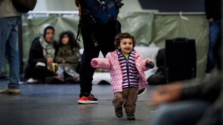 Tidigt på tisdagsmorgonen väntar nya flyktingar på att få lämna Rostock med färjan till Trelleborg. Barn leker på centralstationen i Rostock. Foto: Marcus Ericsson / TT
