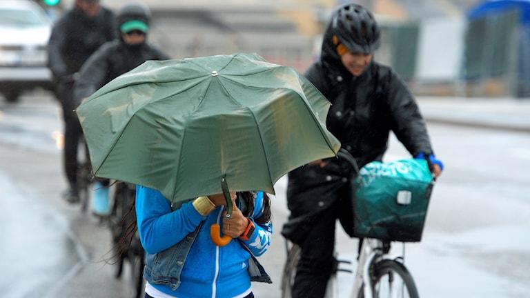 Regn och blåst. Foto: Anders Wiklund /TT.