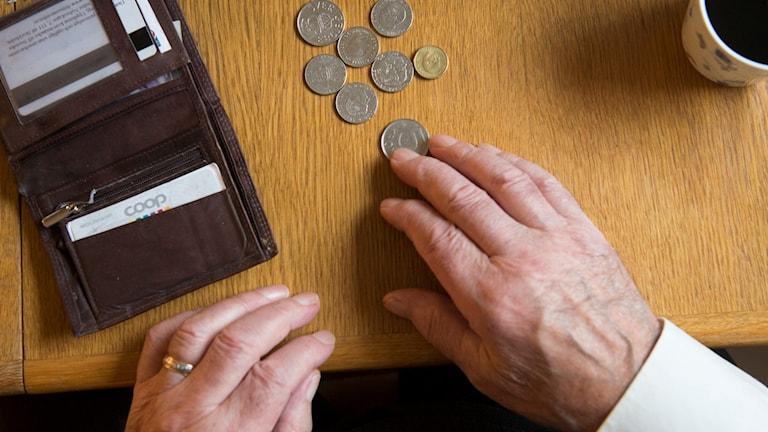 De som invandrat i vuxen ålder till Sverige missgynnas av dagens pensionssystem visar forskning. Foto: Fredrik Sandberg/TT