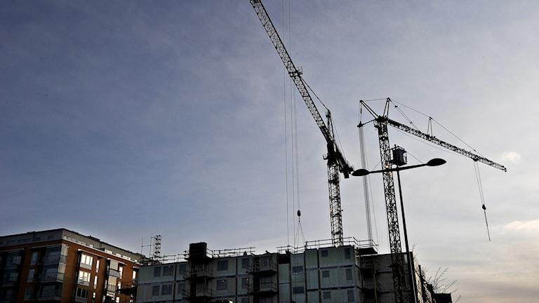 Byggkranar på ett bostadsbygge på Kungsholmen. Foto: Anders Wiklund/Scanpix
