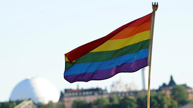 Prideflaggan. Foto: Bertil Ericson/Scanpix