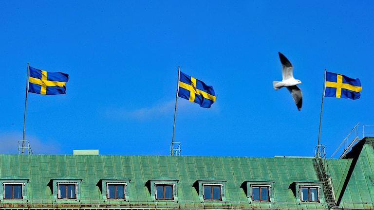 Flaggar för kungafödsel