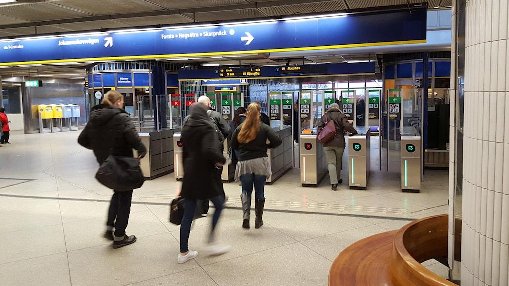 Nya ersättningsregler träder i kraft idag. Foto: Björn Lindberg/SR
