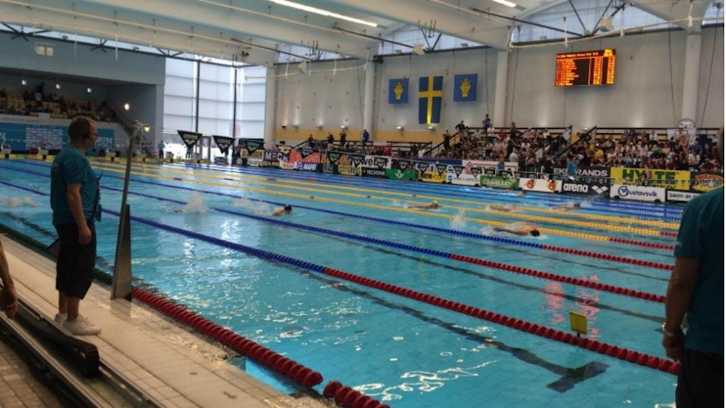 Eriksdalsbadet och tävlingarna Swim Open 2016