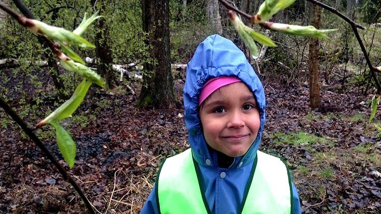 Naya, sex år, plockar skräp i Strålsjöns naturreservat.