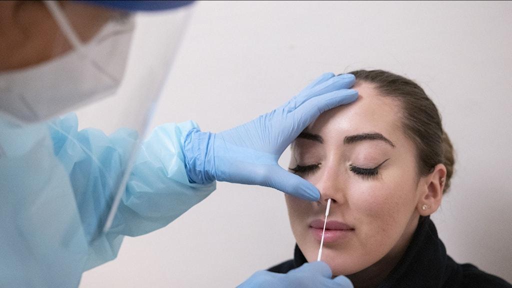Läkare iförd skyddskläder stoppar in en testpinne i en ung kvinnas näsa för att testa henne för covid-19.