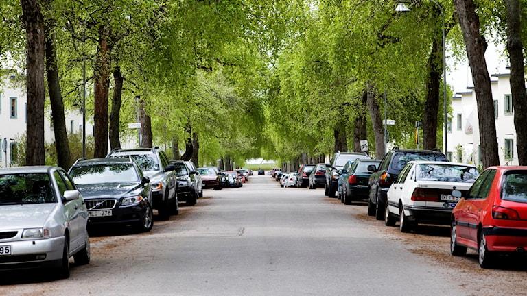 Bilar parkerade i Ålsten